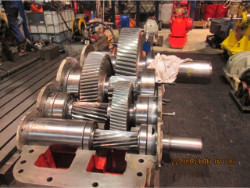 Repair gearbox of brand W.G.W. NK SCN 355