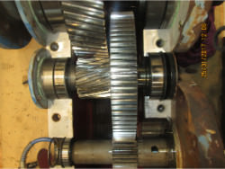 SCHAFER TN-77126 Gearbox Repair