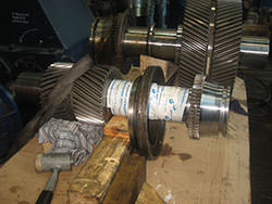Service on a BHS gearbox