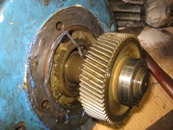 SEW gearbox inspection